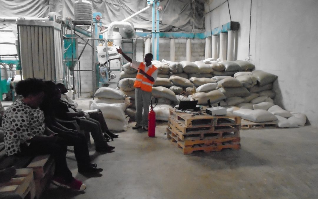 Occupational Health and Safety Audit and Training